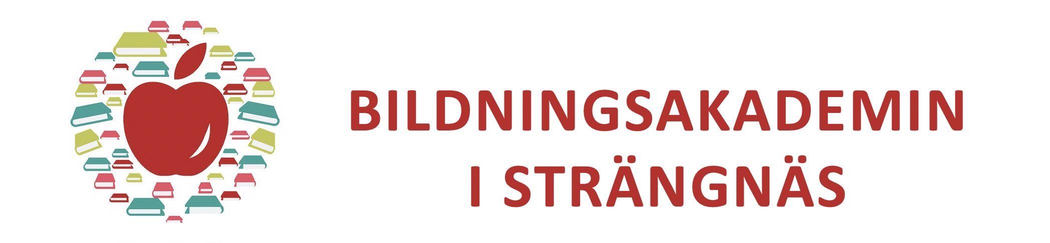 Bildningsakademin i Strängnäs